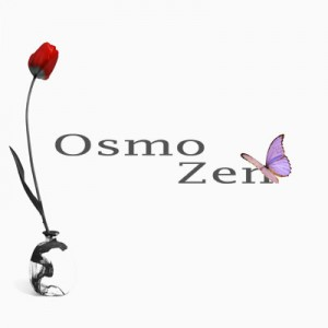 Logo-pour-emission-osmozen